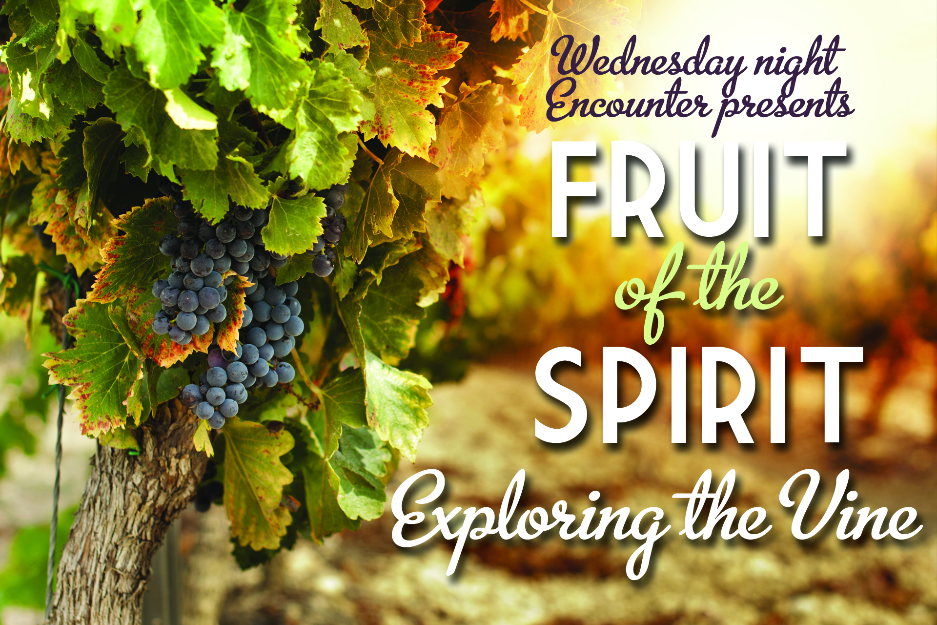 The Fruit of the Holy Spirit - Gary Hopkins